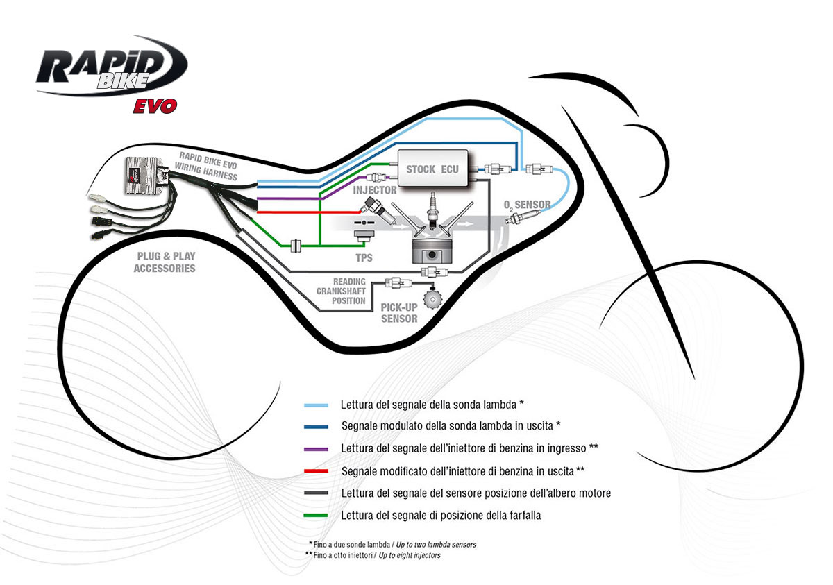 Were The Official Distributor For Rapid Bike Electronic Fuelling Kawasaki Z650 Wiring Harness Modules